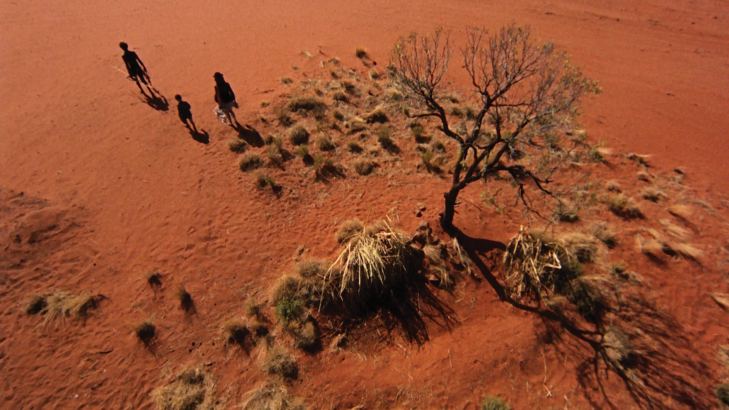 A wide overhead shot of the Outback. Three figures walk away from a tree.