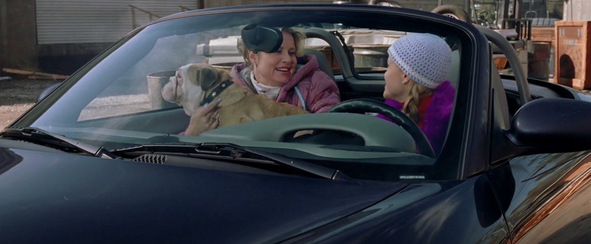 Elle uses her newfound legal skills to help Paulette (Jennifer Coolidge) stand up to her ex-husband and reclaim ownership of her dog.